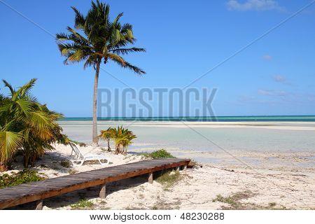 Praia de Cuba