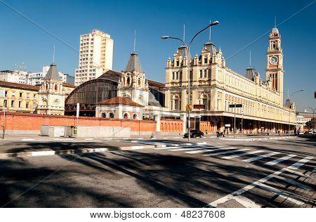 luz train station architecture sao paulo