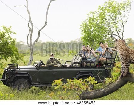 Side view of tourists in jeep looking at cheetah lying on log