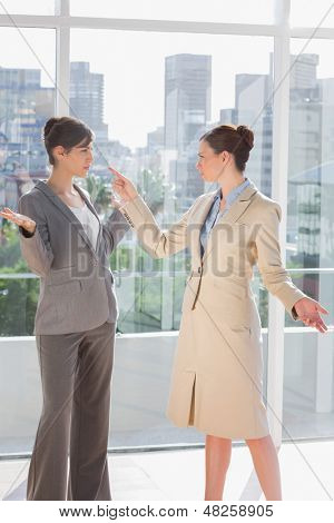 Businesswomen having a fight in a bright office