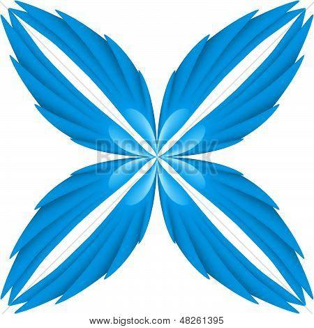 Blue wings.