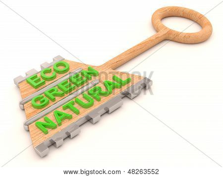 Eco Wooden Key. 3D Model