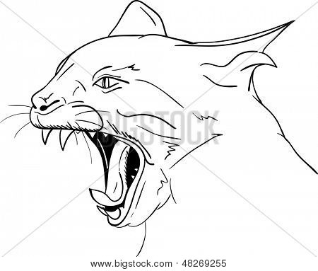 vector - Cat head - open mouth - agressive