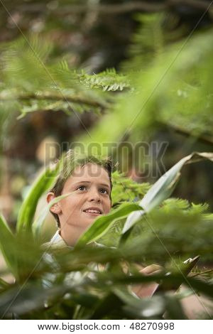 Happy young boy looking at plants in forest during field trip