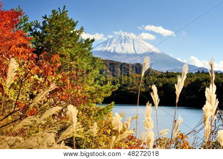 Mt. Fuji and autumn foliage at Lake Saiko.