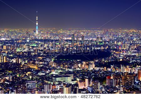 Tokyo cityscape with the Tokyo Skytree.