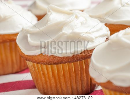 Vanilla cupcakes on a red and white tablecloth.
