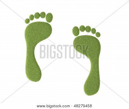 Footprint With Grass On White
