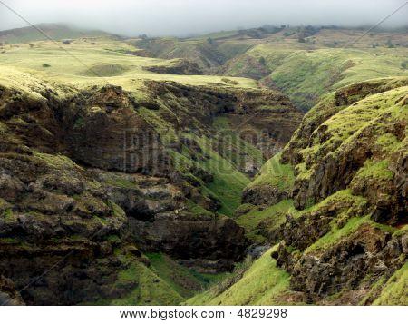 Maui Valley Ravine