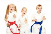 foto of karate  - Young children with a smile in kimono sitting in a ritual pose karate punch arm - JPG