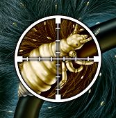 image of crosshair  - Kill lice and eliminating a hair problem as a medical concept with a close up of a louse insect in a crosshairs target with an infestation of parasitic nits or eggs hatching as a symbol for solutions to infection and treatment - JPG