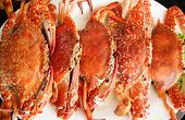 picture of cooked blue crab  - Steamed blue swimming crab in a dish - JPG