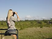 stock photo of  jeep  - Rear view of a young blond woman on safari standing in jeep looking through binoculars - JPG
