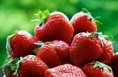 image of fruits  - Fresh strawberries on summer with green background - JPG