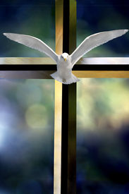 picture of holy-spirit  - Beveled glass cross Holy Spirit bird and colorful blurred background - JPG