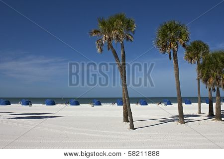 Beach with palm trees and beach tents