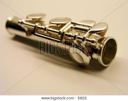 The Flute Piece