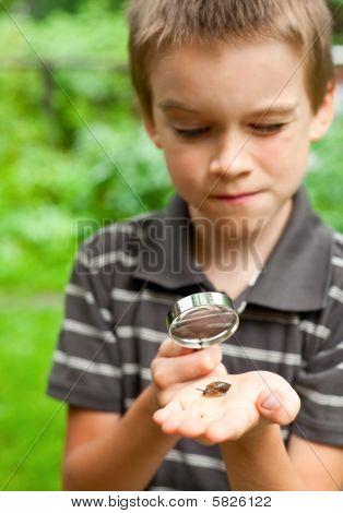 Kid Observing Snail