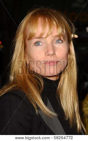 Rebecca De Mornay at the Los Angeles premiere of