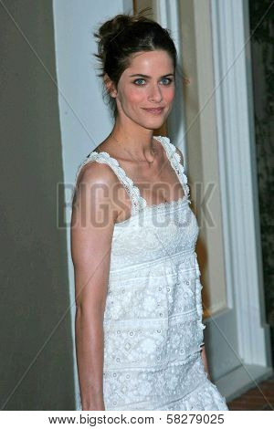 Amanda Peet at the Oscar De La Renta Boutique Opening Benefiting EIF Women's Cancer Research Fund. Saks Fifth Avenue, Beverly Hills, CA. 04-18-07