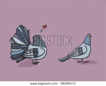 It's A Passion Of Dove