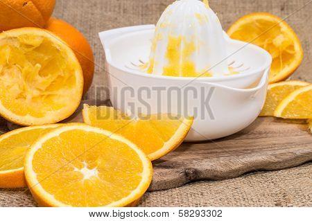Squeezer With Fresh Oranges