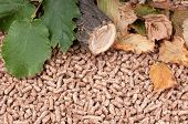 stock photo of raw materials  - Oak pellets and materilas pellets made of - JPG