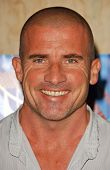 Dominic Purcell at