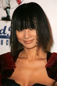 Bai Ling at the Gridlock New Years Eve 2007 Party, Paramount Studios, Los Angeles, CA 12-31-06