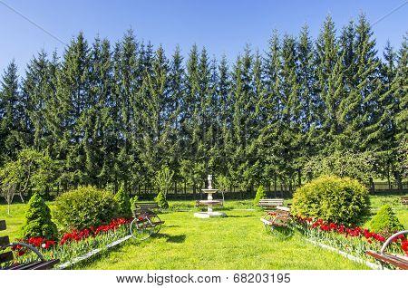 Garden And Artesian Well