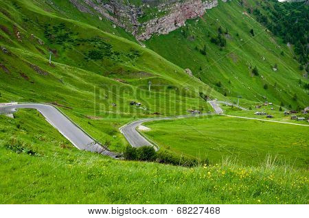 Italy Apls hairpins