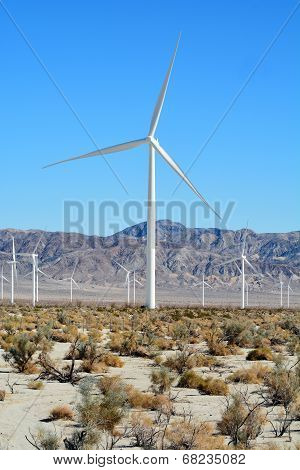 Windmills in the Desert
