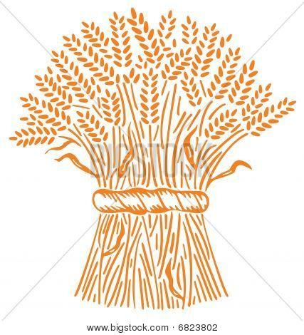 A Heap Of Wheats