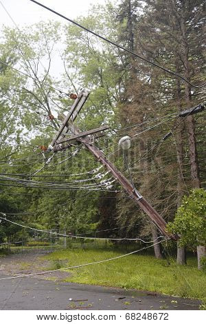 Fallen tree damaged power lines in the aftermath of  severe weather and tornado in Ulster County