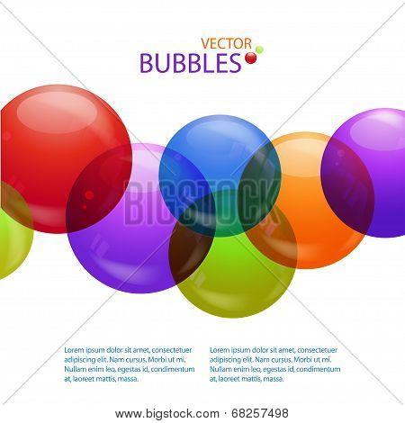 Coloured bubbles with text