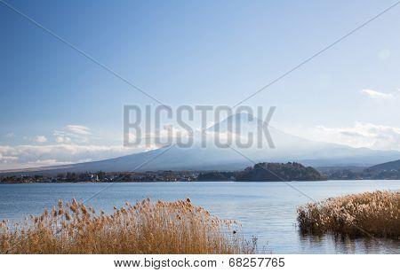 Mountain Fuji fujisan from Kawaguchigo lake with field in foreground at Yamanashi Japan