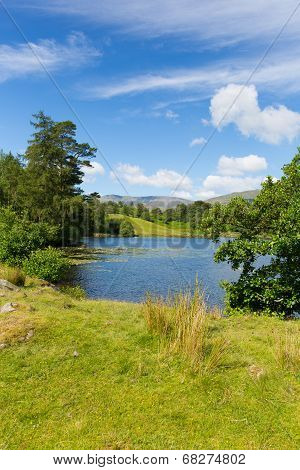 Tarn Hows Lake District National Park England uk