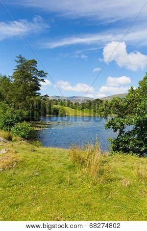 Tarn Hows Lake District National Park England uk