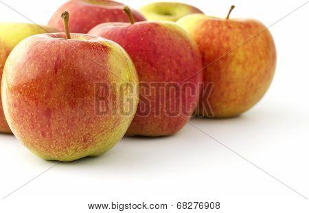 Several ripe braeburn apples