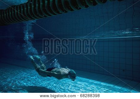 Fit swimmer training by himself in the swimming pool at the leisure centre