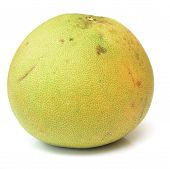 foto of pomelo  - ripe pomelo isolated on a white background - JPG