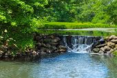 picture of duke  - A small quiet waterfall in Duke Farms in Central New Jersey - JPG