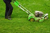 picture of grass-cutter  - Mowing the grass a worker maintains lawn using lawnmower