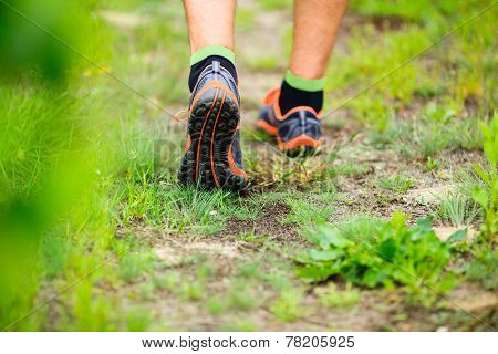 Sports Shows Running Walking On Trail