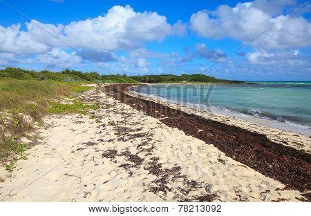 Atlantic coast. Cayo Guillermo. Cuba.