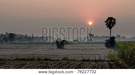 Landscape Of Sunset In Country