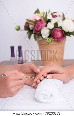 client and manicurist in manicure salon