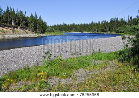 River Landscape: Taiga, Pebbles And Sun.