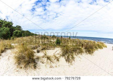 Beautiful Beach At Baltic Sea