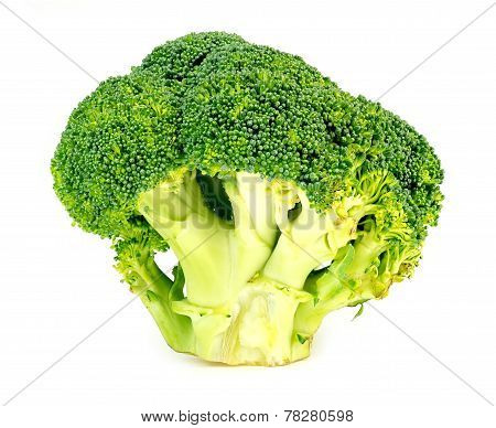 Thick, Juicy, Organic, Green Broccoli Head Sliced On White